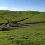 Open land and a cow pond in the California Hills
