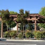 Garden pergola with bushes and trees