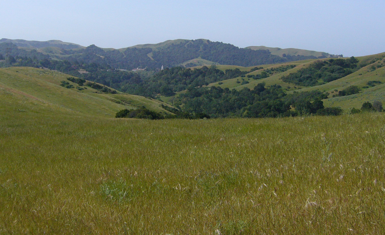 Open land in the California Hills