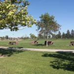 livermore robetson park